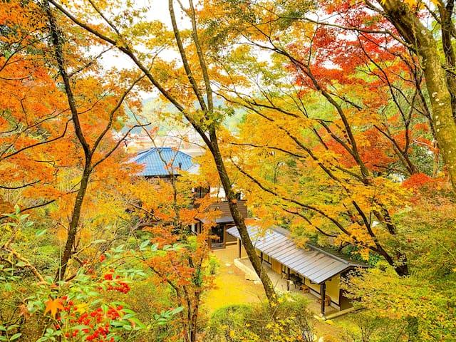 Arita, Nishimatsuura District的民宿