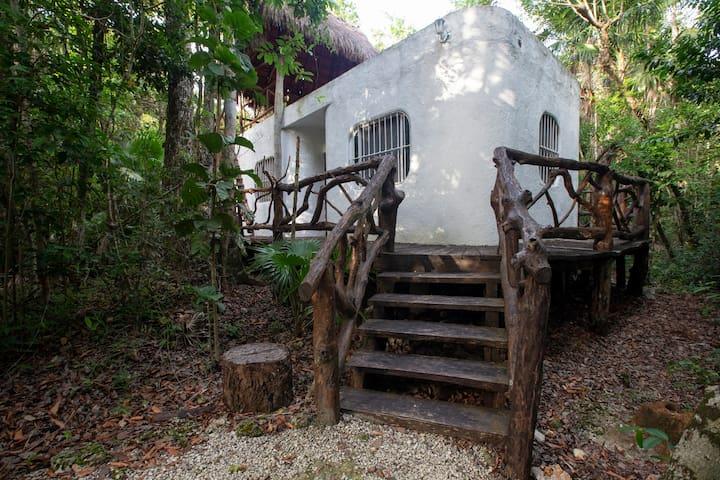 Quintana Roo的民宿