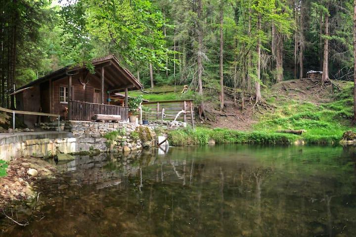 Sigriswil的民宿