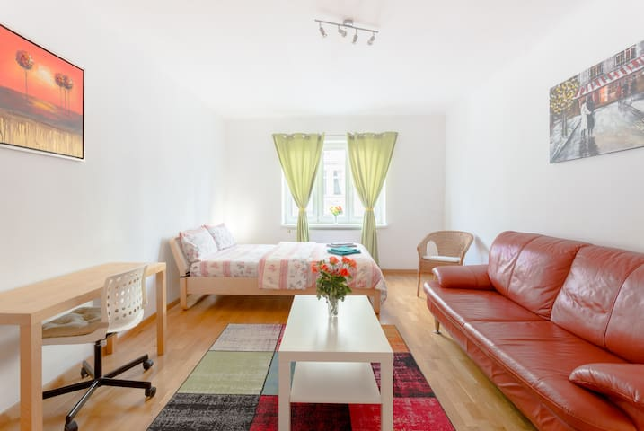 a beautiful, big and cozy room in the city center
