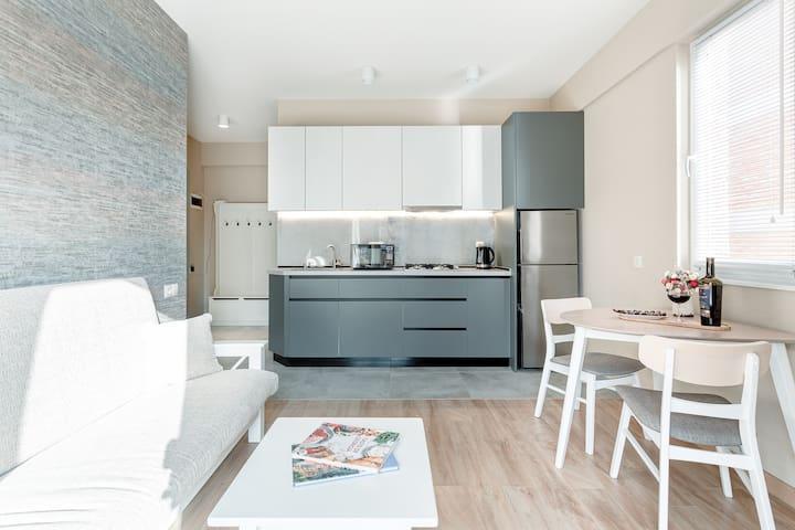 Stylish apartment near park
