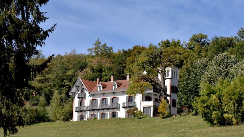 Ornacieux-Balbins的民宿