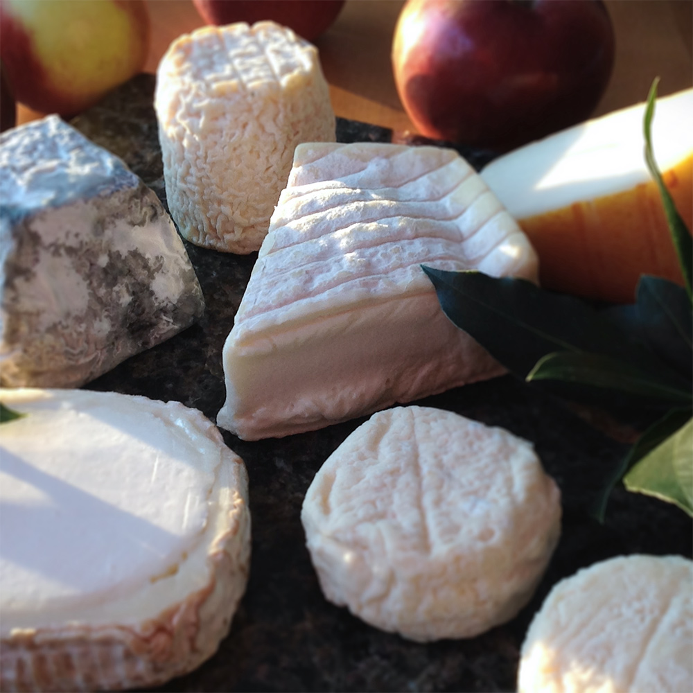 Navigate 1000+ years of French cheese