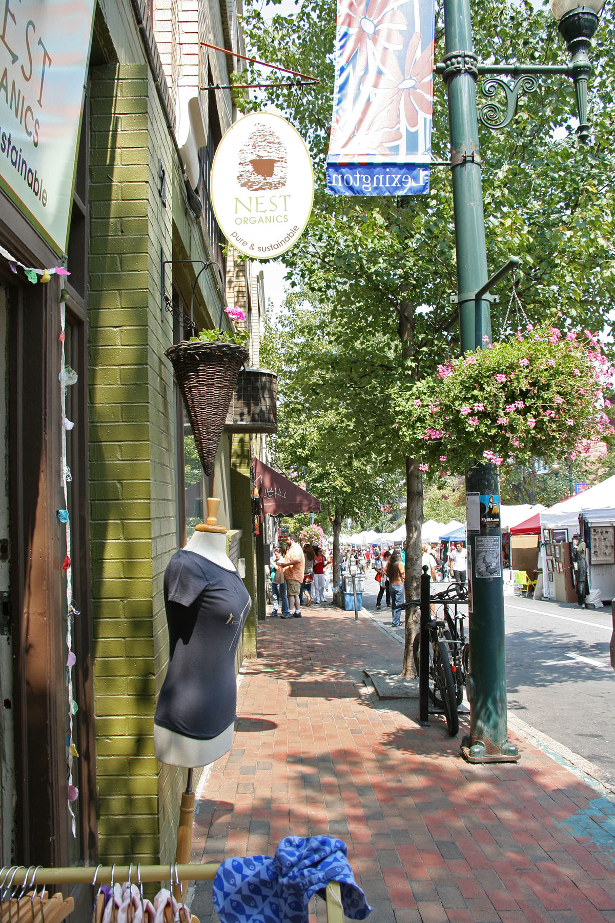 Asheville is a small and walkable city!
