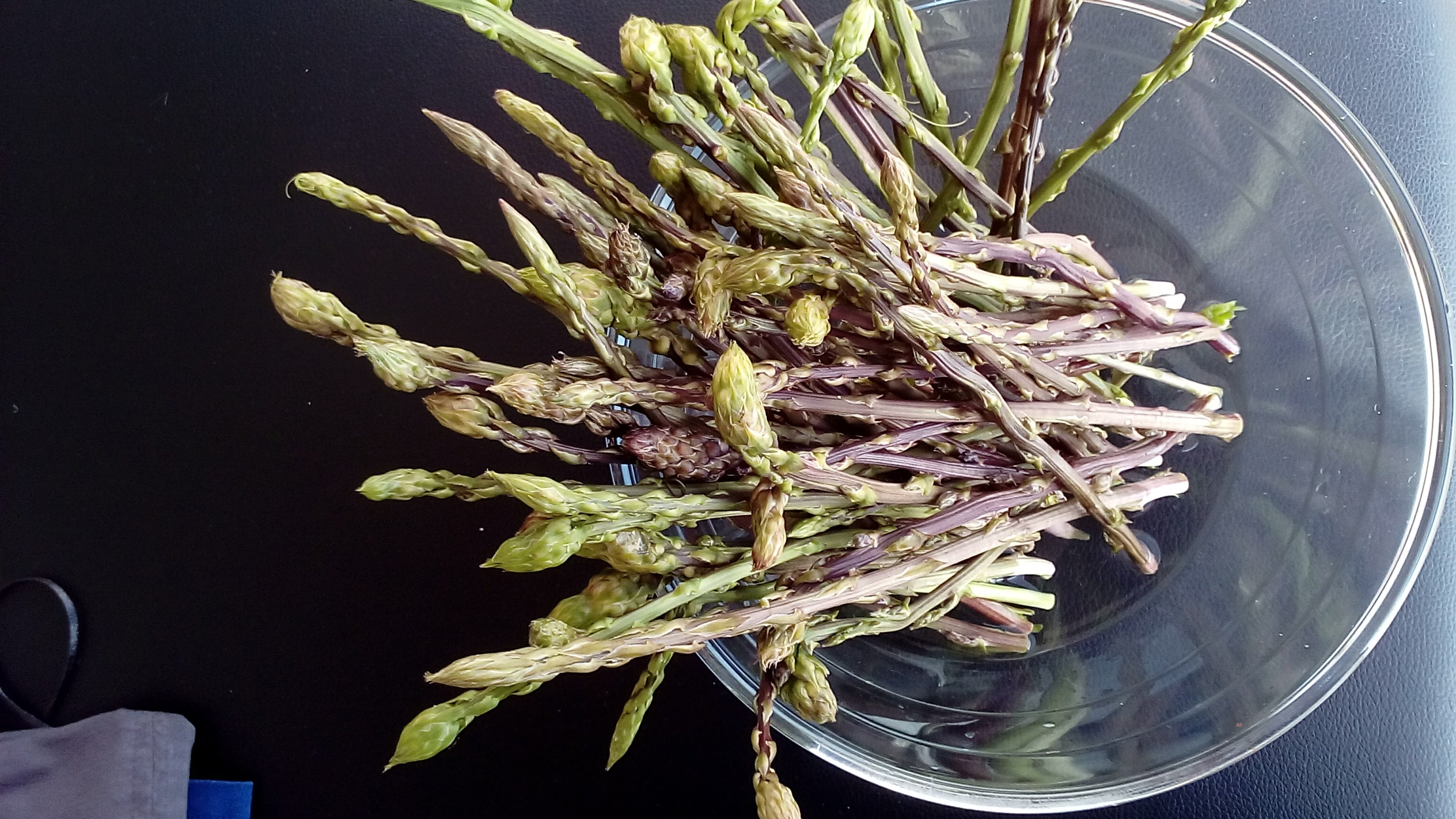Wild Asparagus January to April