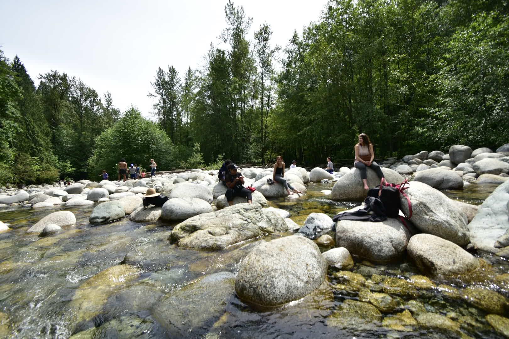 Sun Bathing on rocks