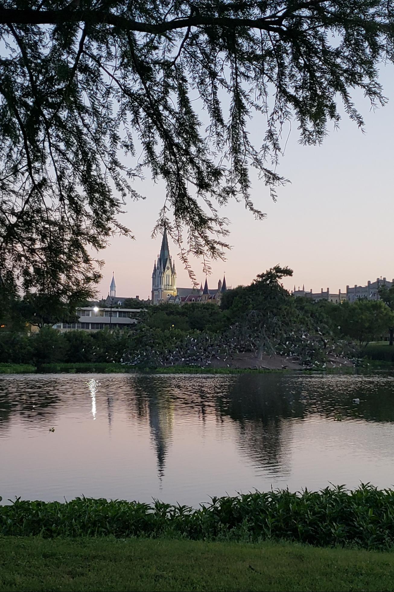 Lake Park Background