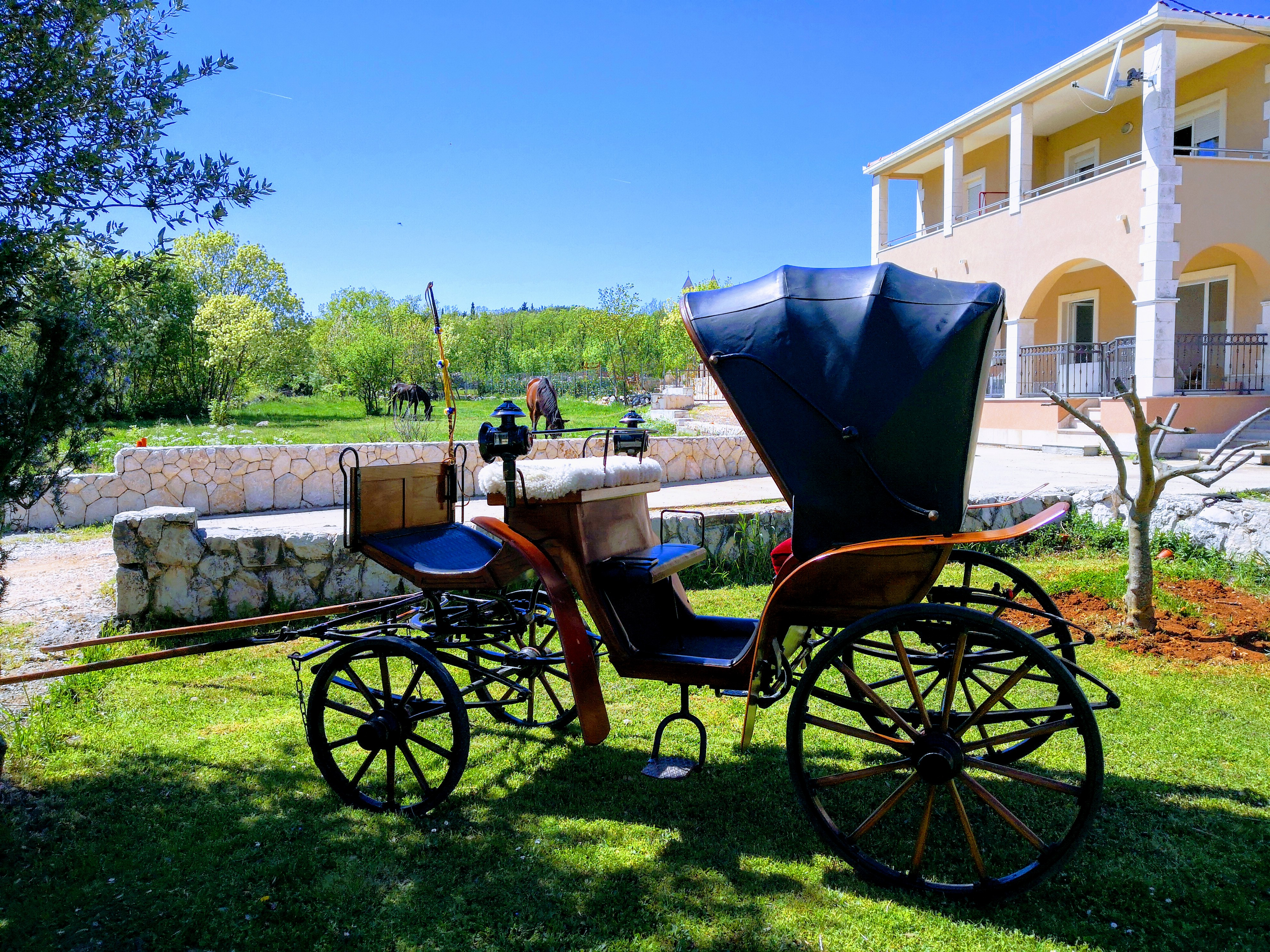 """Our carriage """"Victoria"""""""