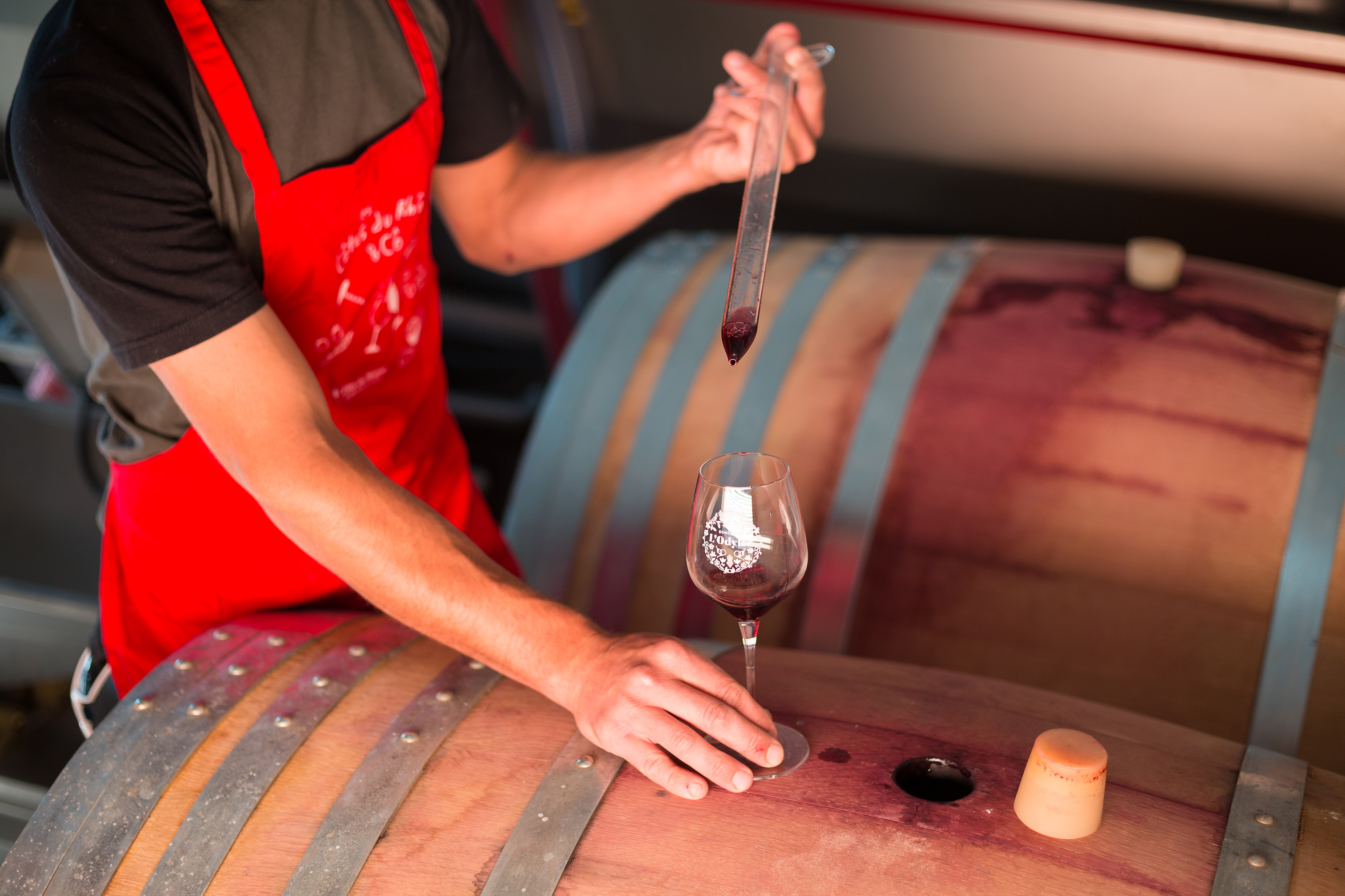 Taste the red wine for the oak barrels