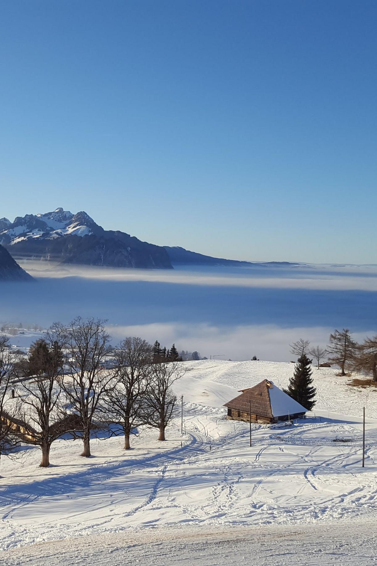 Traumhafte Winterlandschaft Aeschiried