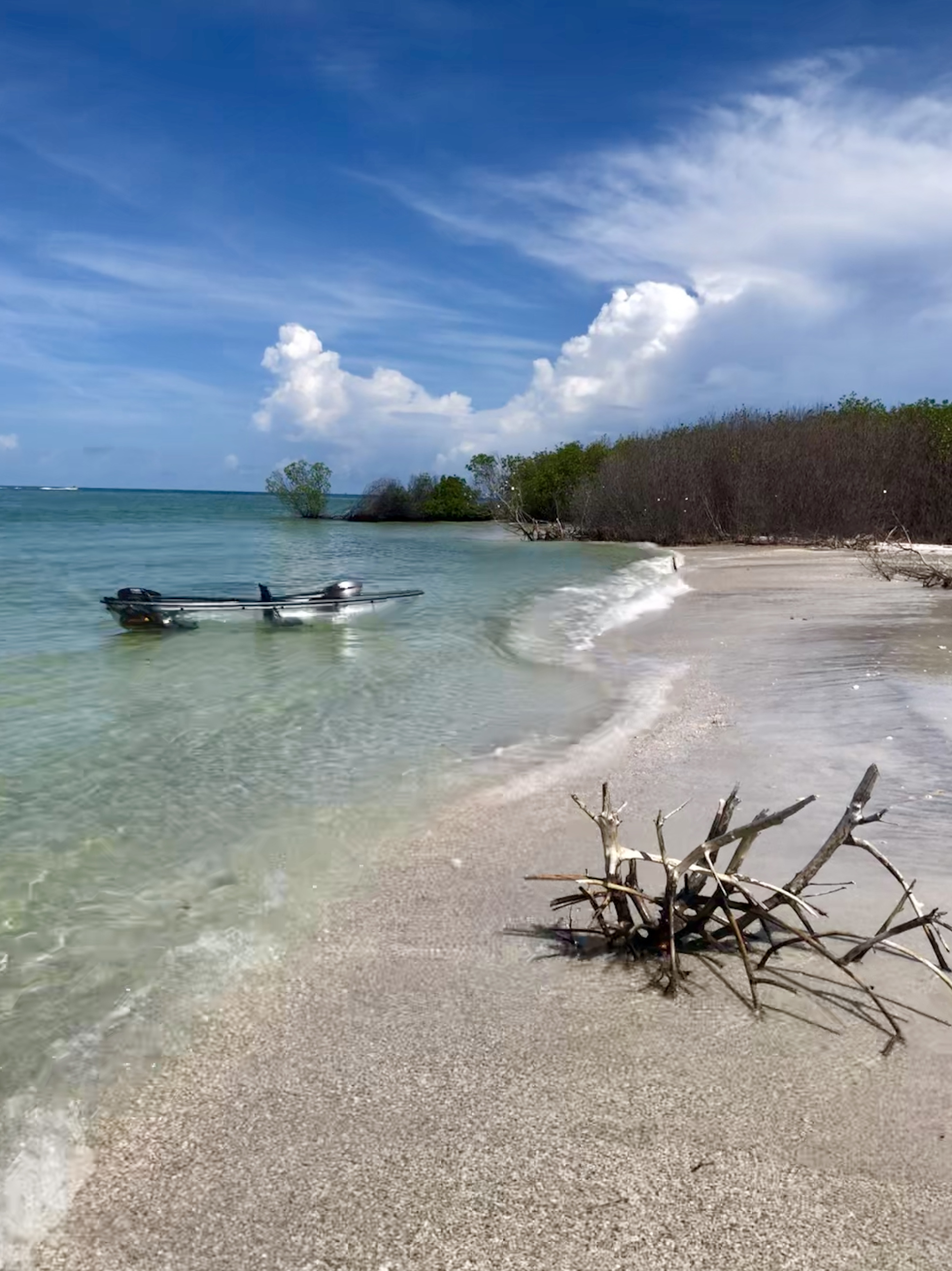 Pristine beaches of Shell Key