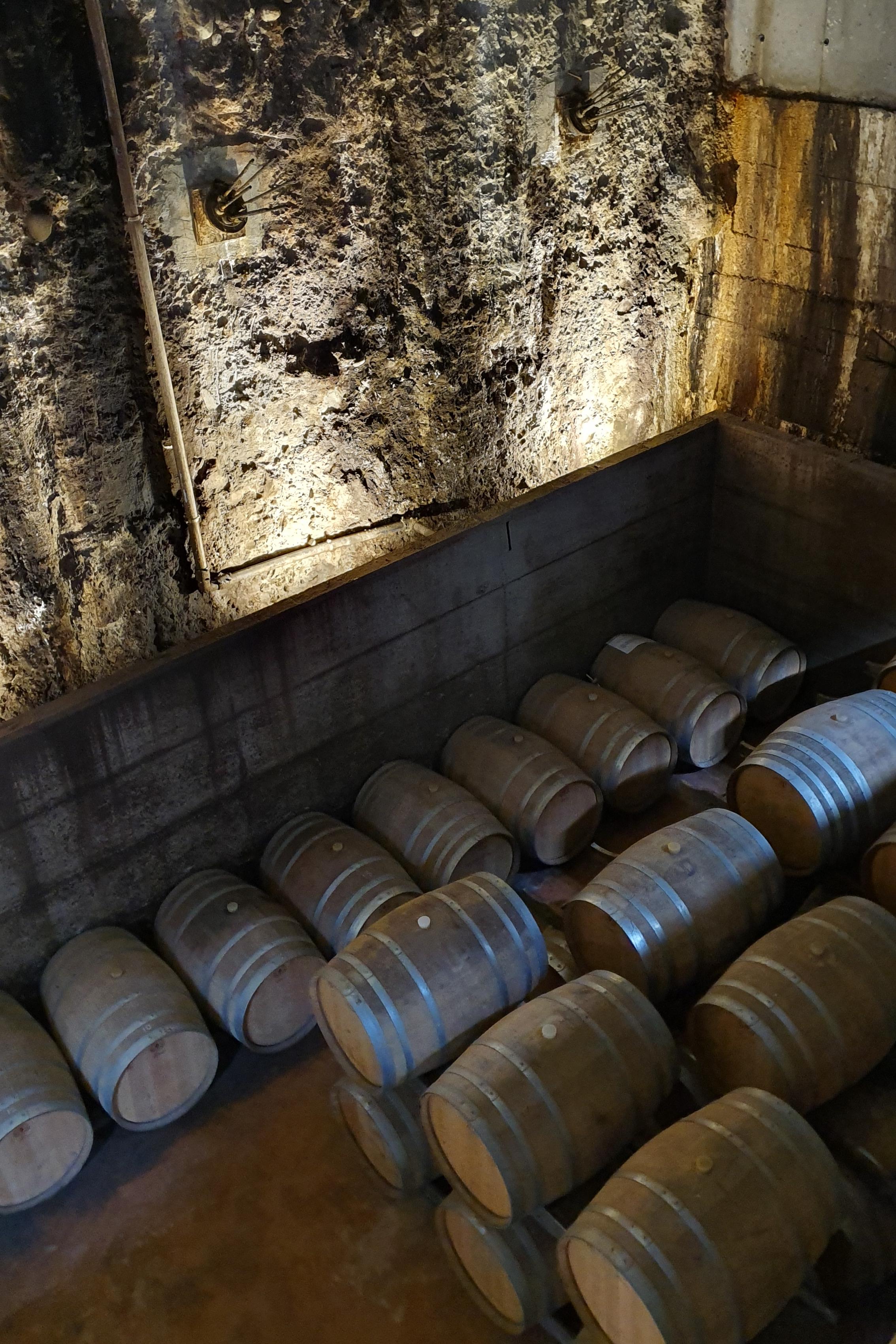 Выдержка вина в дубовых бочках