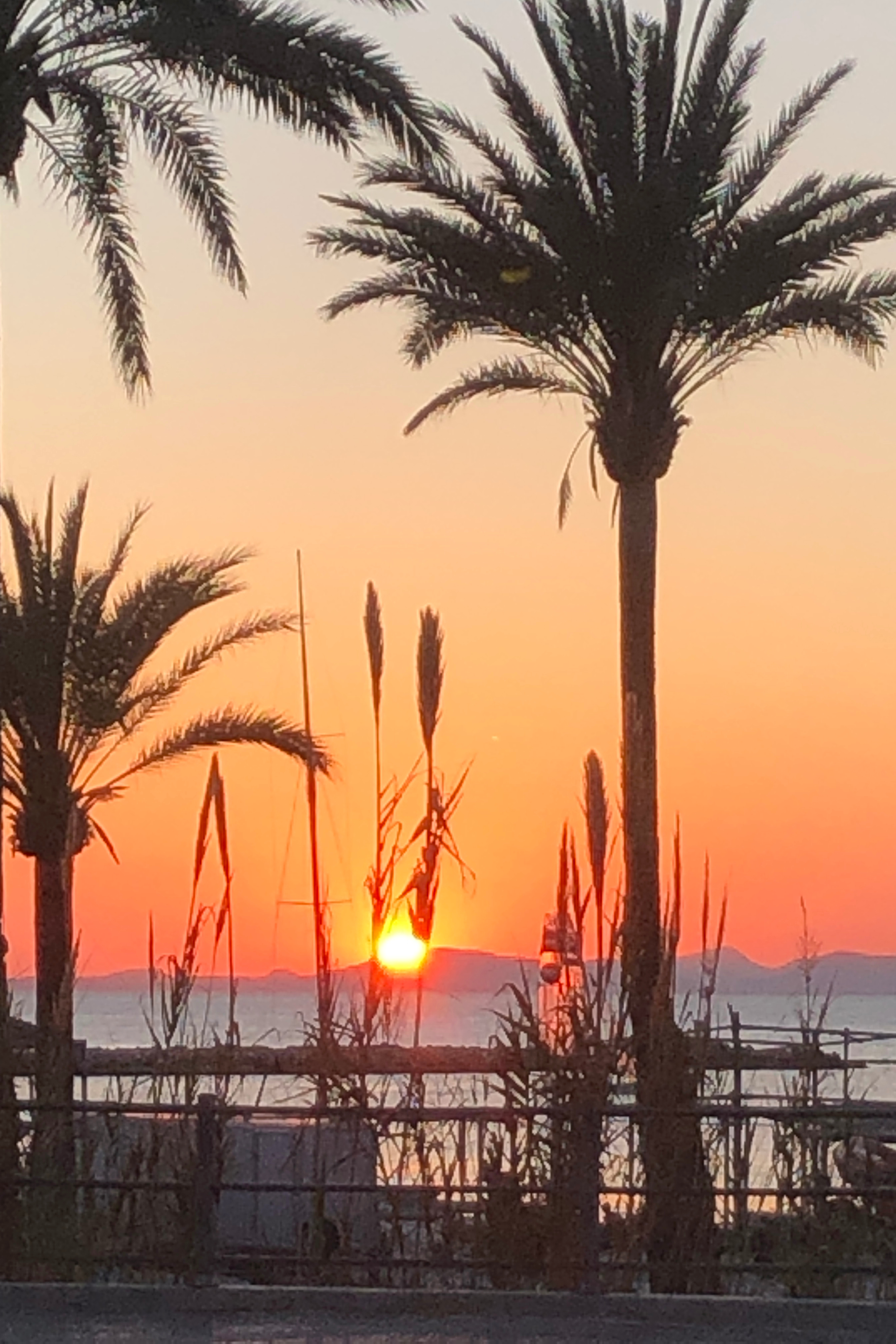 The evening sunset at Oranje Buiten rest