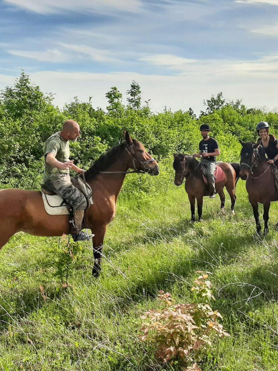 Enjoy in horse back ride