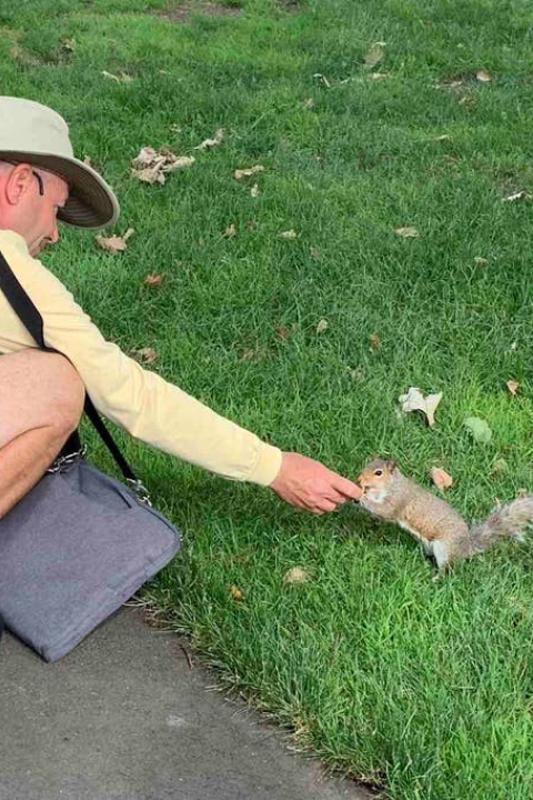 The Squirrel Whisperer