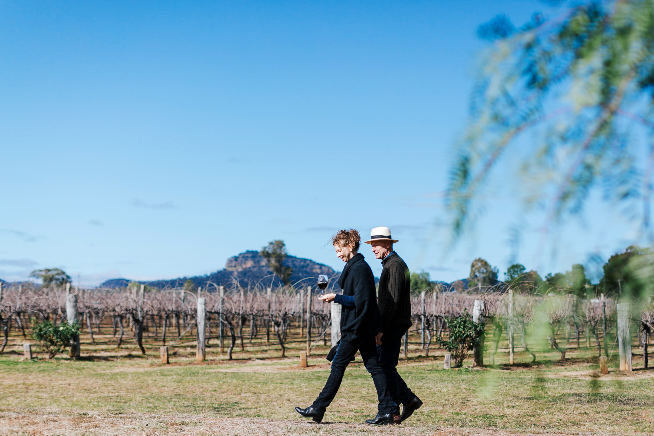 A day in the life of a winemaker
